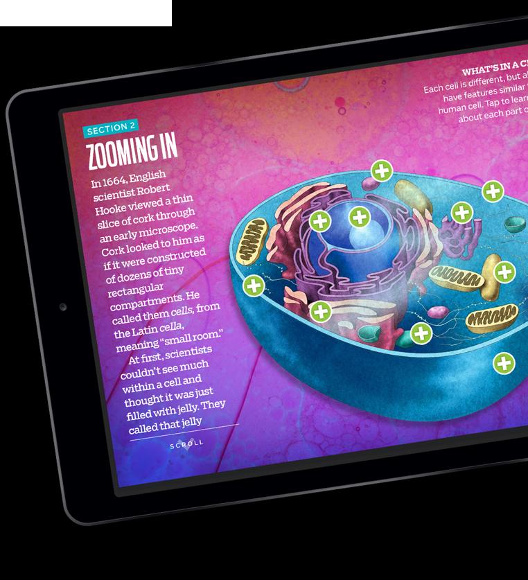 Kids Discover App on iPad