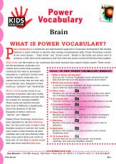 PV_Brain_047.jpg