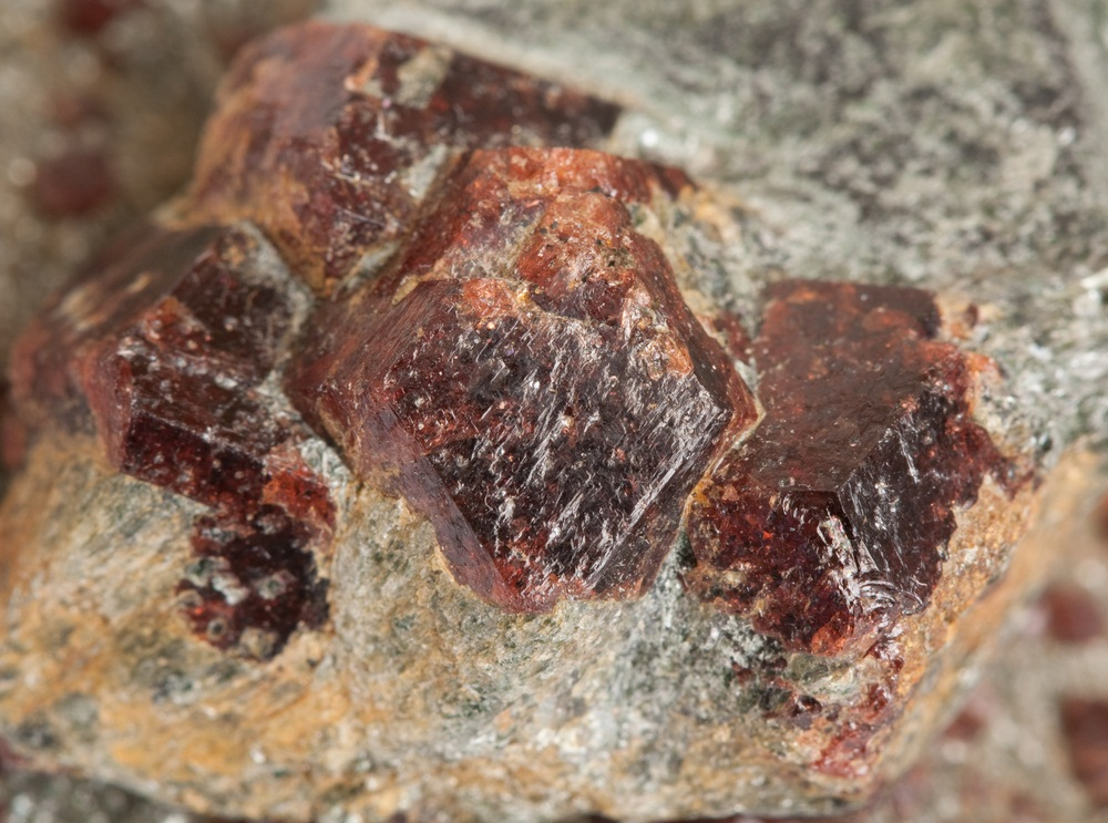 Intense metamorphism can cause new minerals to form in rock. These red garnets are a semi-precious gemstone. (V_Kurashev/ Shutterstock)