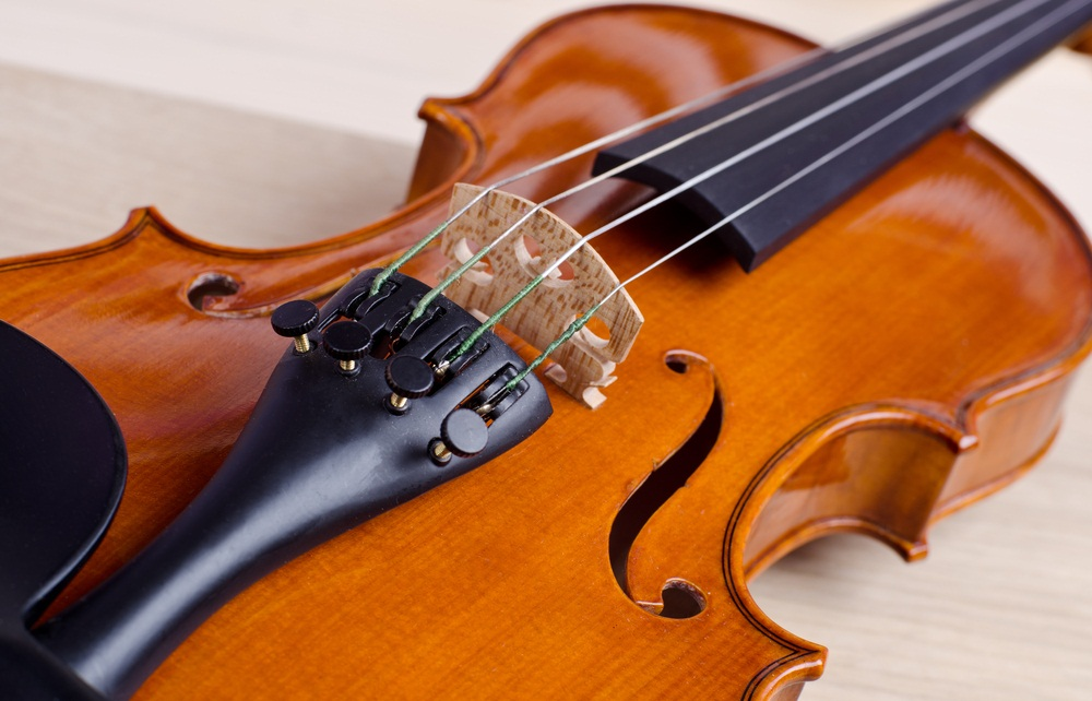 Musical instruments, from guitars to clarinets, are made with wood. Three different species of tree—most commonly maple, spruce, and ebony—may contribute wood to the making of one violin. (Roman Pyshchyk / Shutterstock)