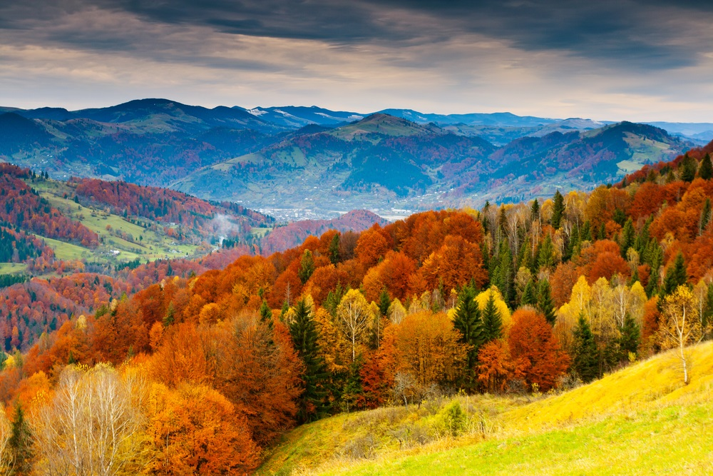 "An entire tourism industry revolves around ""leaf peeping."" In the United States, about $30 billion a year is spent by people traveling to see the fall colors. (Creative Travel Projects/ Shutterstock)"