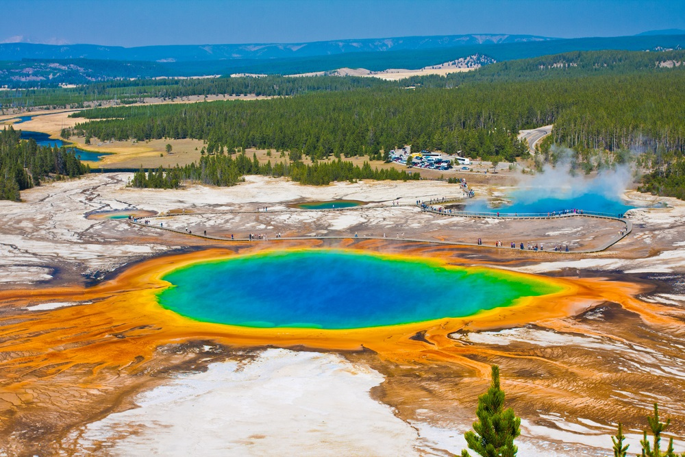 "This hot spring in Yellowstone National Park is full of extremophiles that like living in high temperatures. Two hundred degrees feels just right to them. The orange rings at the edge of the spring are actually ""mats"" of single-celled extremophiles. The different shades of orange are different species of extremophiles that like slightly different temperatures. (Lorcel/ Shutterstock)"