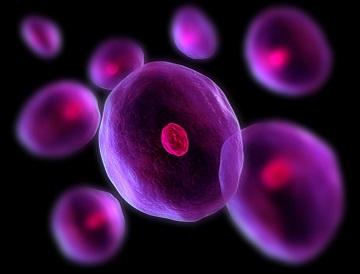 cells home teaser