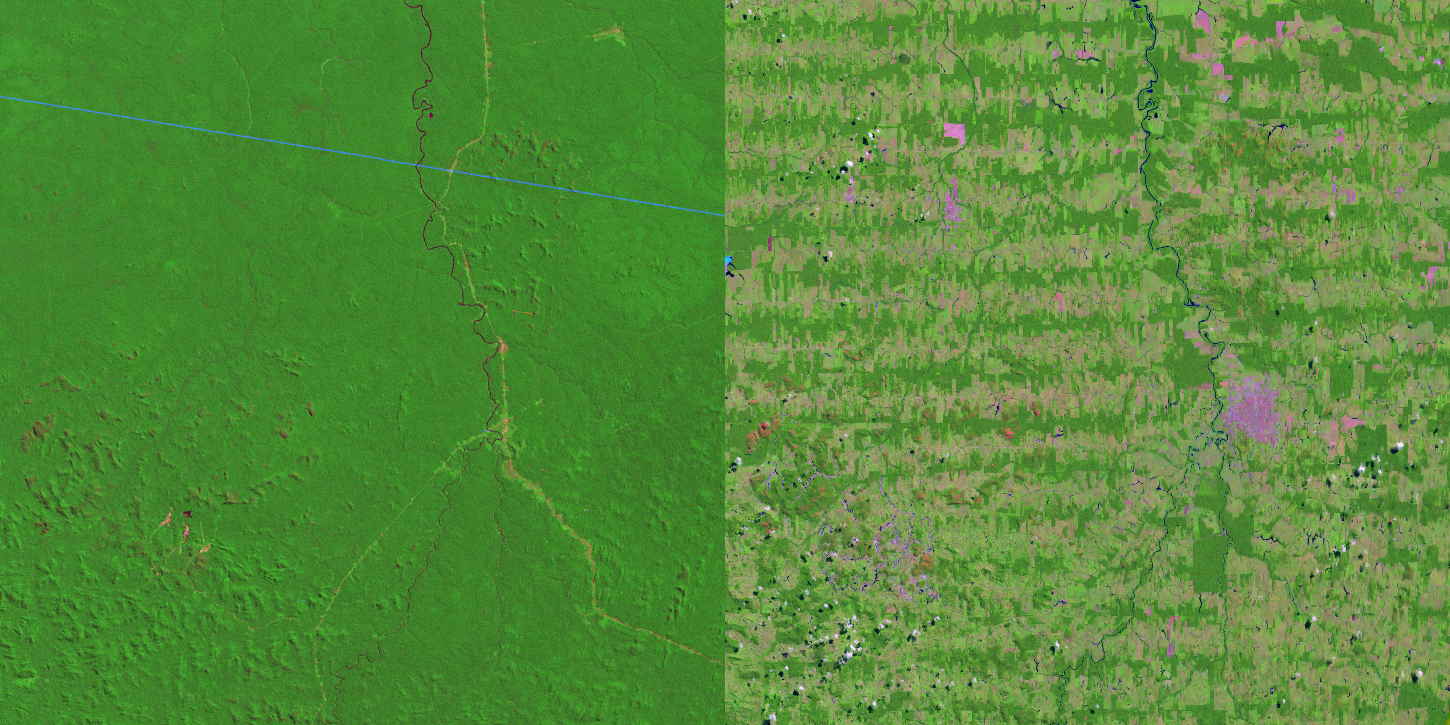 "Did you know? Over one-third of the land on our planet is used for farming and ranching. This is a picture of 650 square miles of Amazon rain forest taken from a NASA satellite. The left side is what the area looked like in 1975. The right side is what that same area looks like today. Here's what the NASA Earth Observatory had to say about this: ""Settlers cleared the area by first cutting and then burning the forest. As farmed lands grew larger and closer together, they began to merge into a large area of deforestation."" (Image via Nasa)"