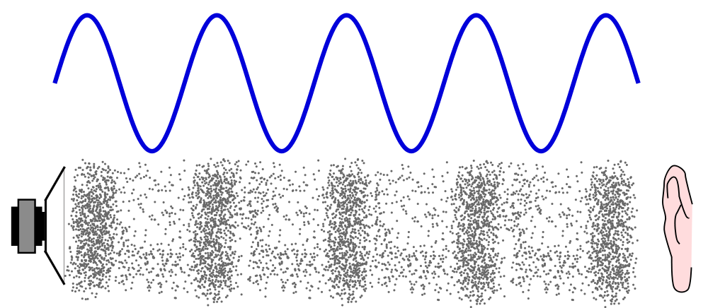 "A loudspeaker generates a sound wave: The areas where the air molecules are pushed together are called ""compressions."" The areas where the air molecules are more spread out are called ""rarefactions."" The blue sine curve on top represents the sound wave, with high points being compressions and low points being rarefactions. The distance from one high point, or compression, to another is called the ""wavelength."" (Image via Wikimedia Commons)"