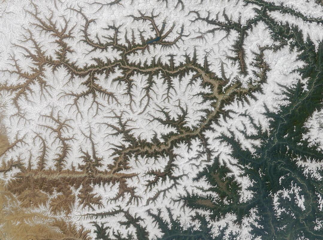 Is this the surface of a leaf? A snowflake? No, it's a satellite photo of the Yarlung Tsangpo River in the Tibetan mountains and its tributaries. Melting snow at higher elevations flows into tributaries leading down to the river. (NASA)