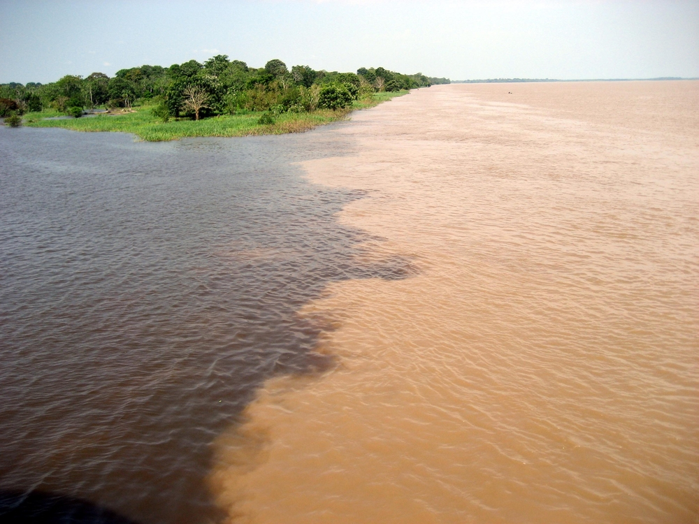 Two tributaries of the Amazon River meet and run alongside each other without mixing for a mile or so. On the left, the Rio Amaturá is stained dark brown by decaying plants that contain a chemical compound called tannin. On the right the Rio Solimões is light brown and milky, carrying a load of sand and silt from upriver. (Guentermanaus / Shutterstock)