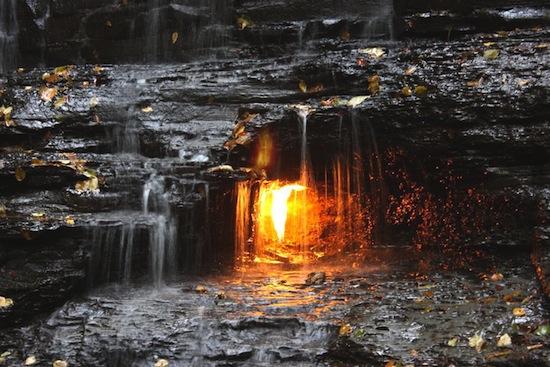 Eternal_Flame_Chestnut_Ridge