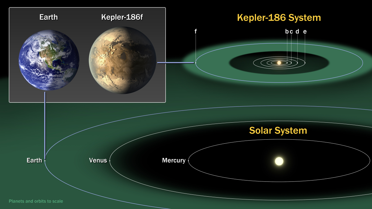 In April 2014 NASA announced that Kepler had found its first Earth-sized planet in the habitable zone of a star. The planet is called 186f, after the star called 186 that it orbits. 186f is part of a small solar system with five planets. (NASA Ames/SETI Institute/JPL-CalTech)