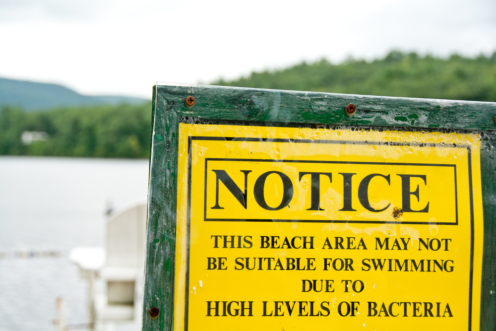 High levels of bacteria can make water unsafe for swimming and drinking. (Erica J. Mitchell / Shutterstock)
