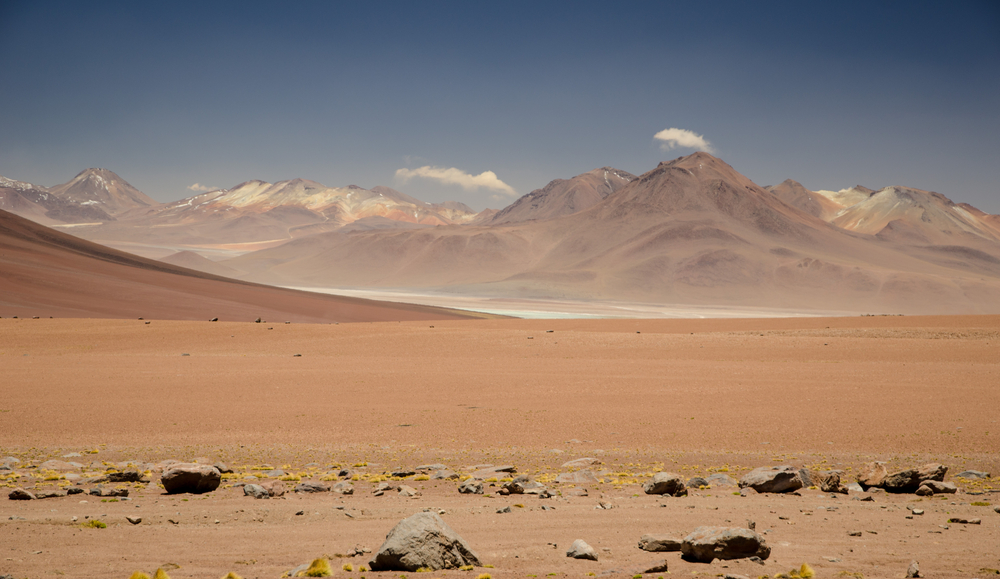 The Atacama Desert in Chile hosts one of the driest ecosystems on Earth. (Tomas Sykora / Shutterstock)