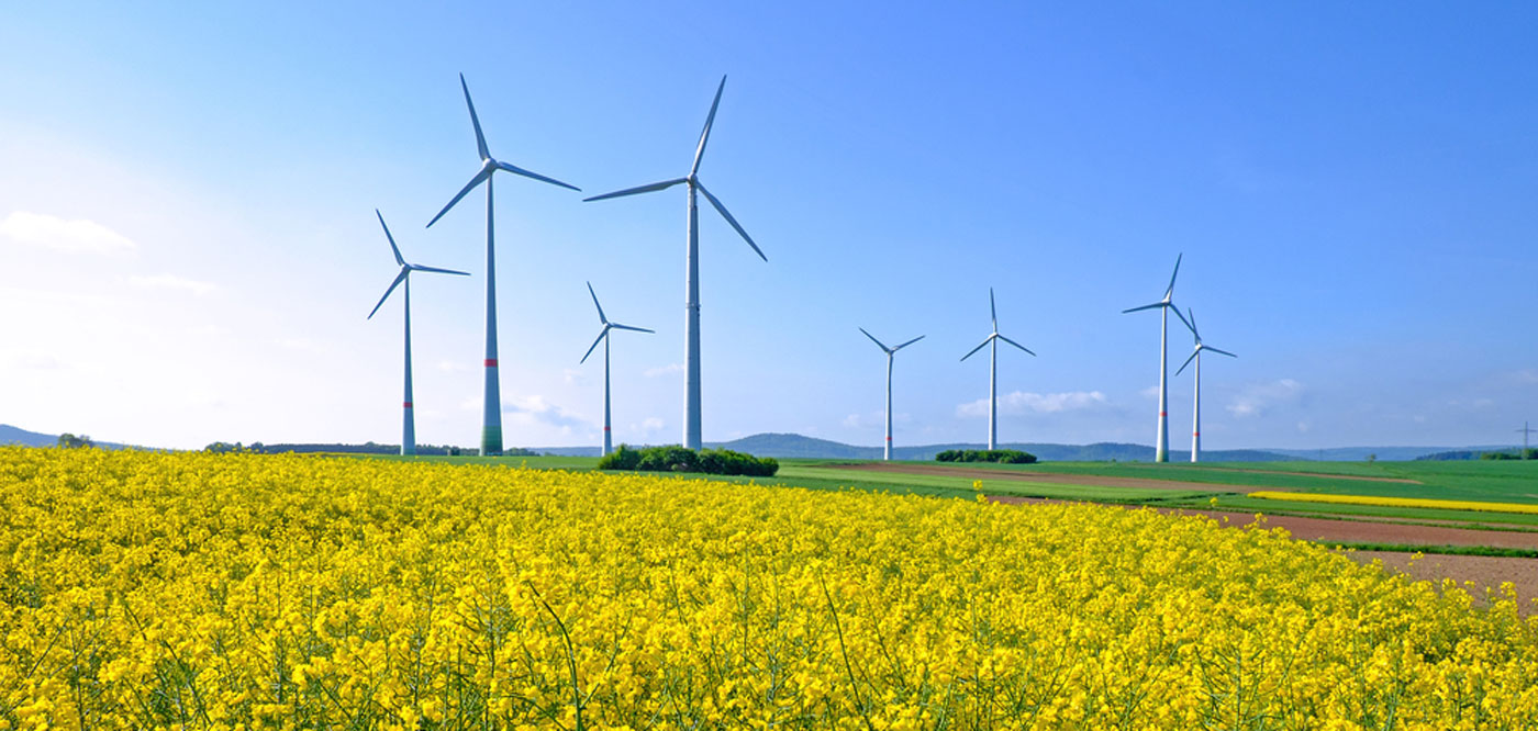 The Environment Alternative