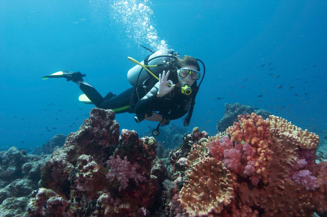 Diver_1060_2