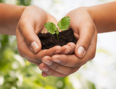 Earth Day Resources for Teachers and Students