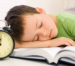 Getting Your Kids Back into the School Schedule