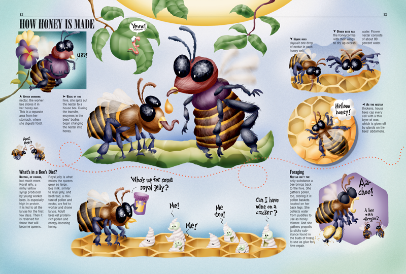 Orig likewise Sabine Deviche Bee Anatomy as well Hive Schematic further Bee Castes additionally Ac E B Bd Fed B E. on queen honey bee diagram