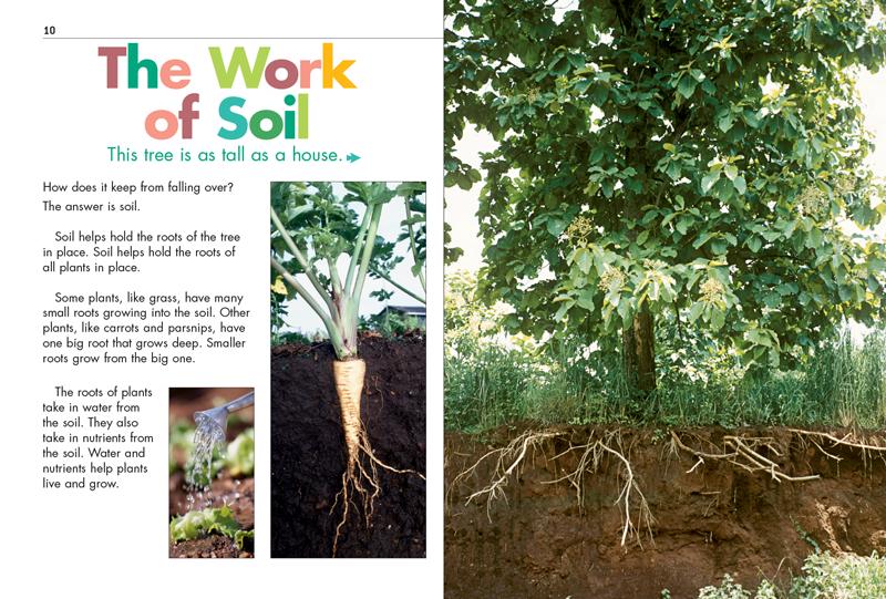 Kd1 soil kids discover for Importance of soil for kids