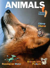 KD2: Animals