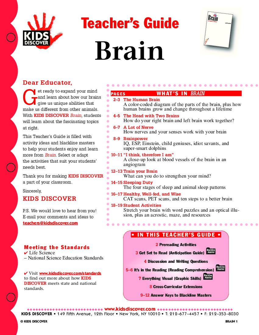 TG_Brain_047.jpg